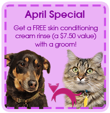 April Grooming Special $7.50 Skin Conditioner Free!