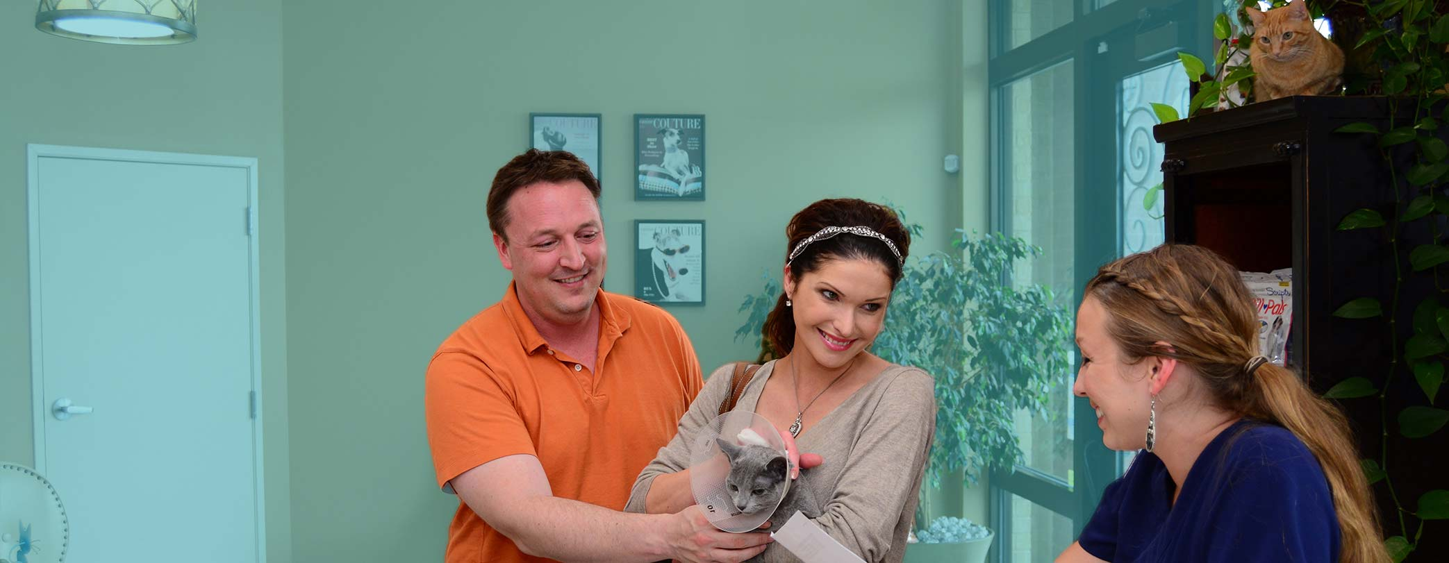 We support your relationship with your pet at Perky Paws Pet Hospital McKinney, TX
